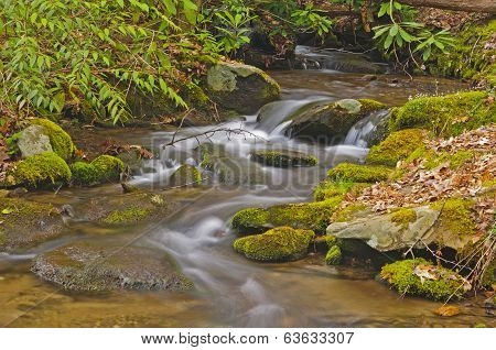Mountain Stream In Early Morning
