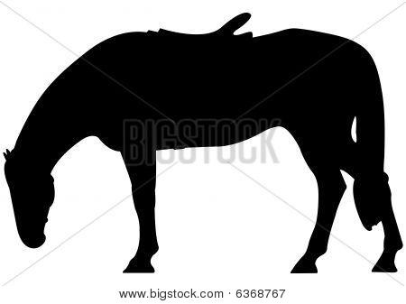 Horse silhouette illustration