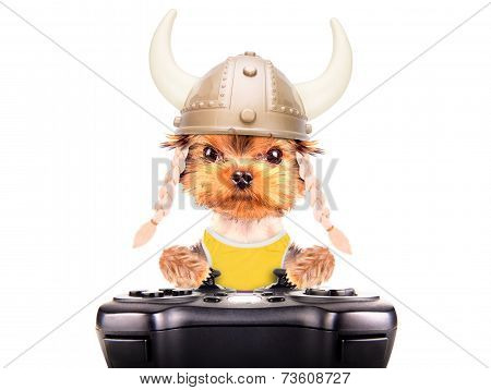 poster of dog dressed up as a viking play on game pad isolated