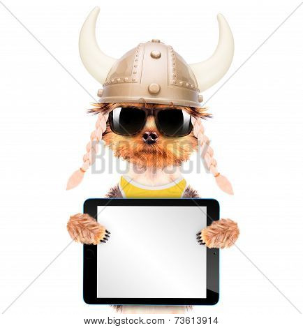 dog dressed up as a viking holding blank tablet pc poster