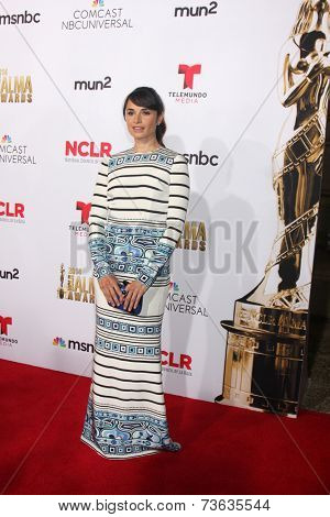 LOS ANGELES - OCT 10:  Mia Maestro at the 2014 NCLR ALMA Awards Arrivals at Civic Auditorium on October 10, 2014 in Pasadena, CA