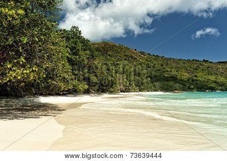 Lovely Tropical Beach
