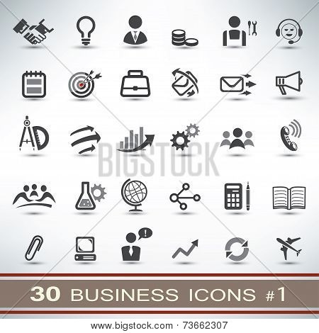 30 Business Icons Set