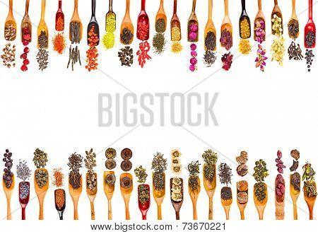 Border Frame of Collection Set Tea Leaves and Fruit Berry Flower Additives in spoon scoop, isolated on white background