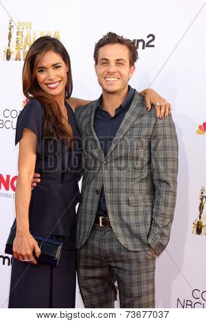 LOS ANGELES - OCT 10:  Daniella Alonso, Michael Sidisin at the 2014 NCLR ALMA Awards at Civic Auditorium on October 10, 2014 in Pasadena, CA