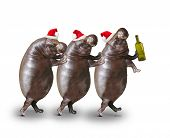 Three drunken hippos going to home from christmas party.  poster