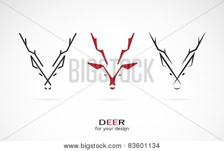 Vector Image Of A Deer Design On White Background