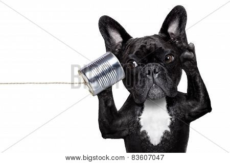 Dog Phone Telpehone