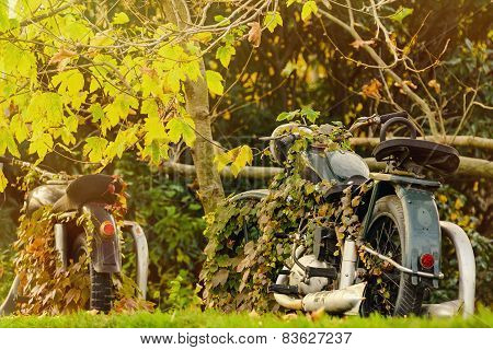 Image of An Old Motorcycle In Autumn Foliage poster