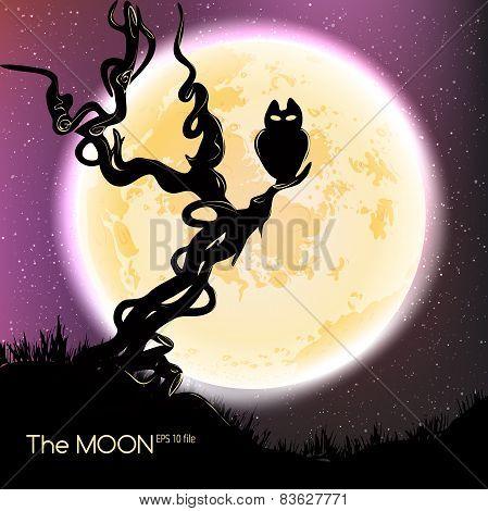 Moon in dark night background