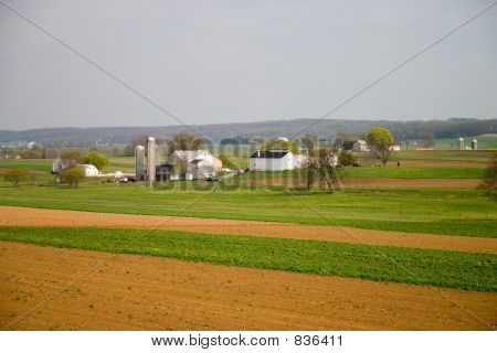Farm Field, House and Barn in Amish Country in Spring
