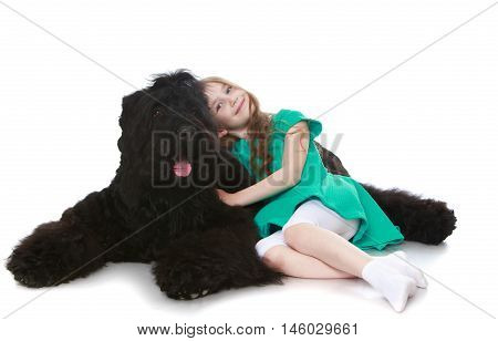 Cute little girl with long brown hair to her waist . Girl lying on the floor curled up with a big, black, shaggy dog - Isolated on white background