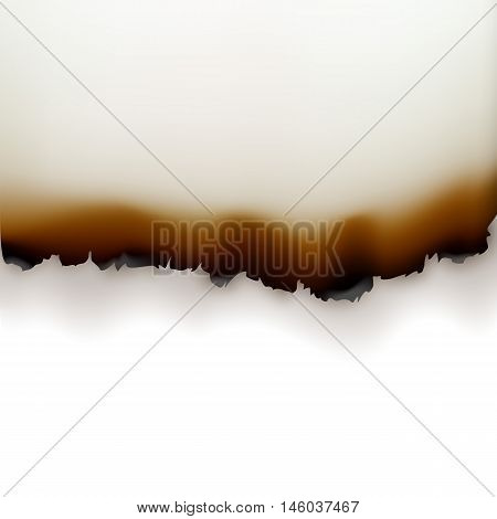 Vector Burned Paper Edges Close up Top View Isolated on White Background
