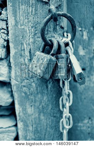 Vintage Corroded Padlocks  With Chain On A Ancient Gate Background In Cyan. Old Rusty Padlocks On A