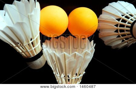 Badminton And Ping Pong