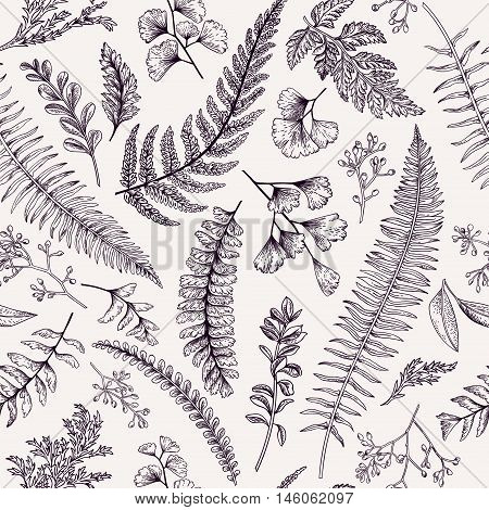 Seamless floral pattern in vintage style. Leaves and herbs. Botanical illustration. Boxwood seeded eucalyptus fern maidenhair. Vector design elements.
