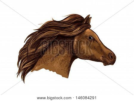 Sketched brown horse head icon of purebred racehorse with flying mane. Horse racing symbol or equestrian sporting theme design