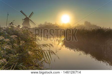 Windmill In Dewy Marshland