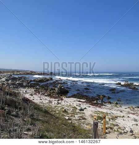 This is an image of the rocky shoreline of Asilomar State Preserve in Pacific Grove, California.