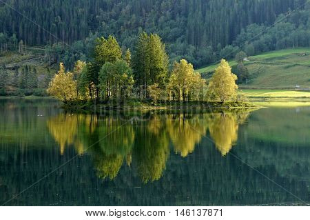 Trees reflection in lake. Norway, near Bergen