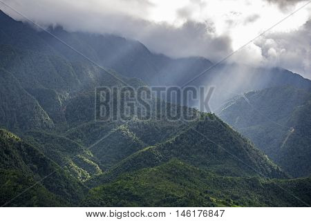 Tropical forest and mountain in the mist in Sapa, Lao Cai province , Vietnam.