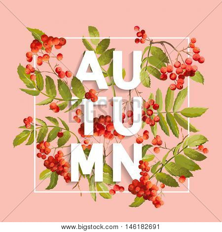 Rowan berry Floral Background. Autumn Design in Vector. T-shirt Fashion Graphic.