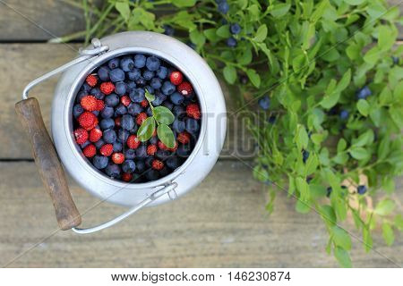 wild berries in a pot with a handle on the background of an old wooden surface / freshly gathered forest berries