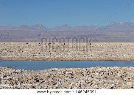 Atacama Salar, Chile / Salt lake and mountains at Atacama Salar, Chile