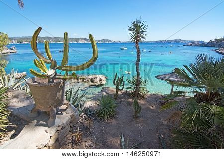 Cactus Garden And Green Water