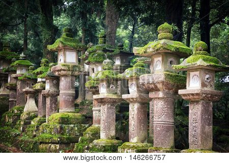 Rows of ancient stone and wooden lanterns covered in moss. Nara, Japan