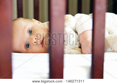 A cute wide awake 5 month old baby girl is laying in her crib during nap time.