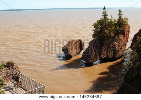 Backpackers  At Hopewell Rocks