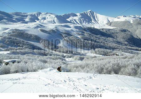 Freeride Ski In The Woods Of Corno Alle Scale Resort.