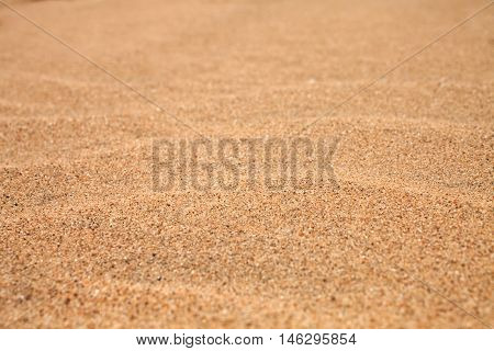 Background with yellow beach sand close up