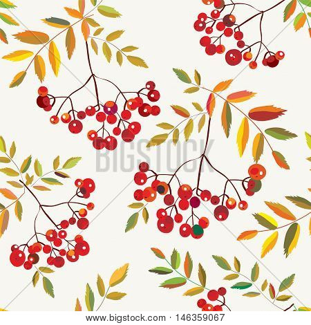 Rowan berries seamless autumn pattern - vector graphic decorative illustration