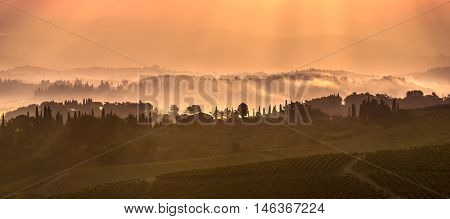 Tuscan Landscape In The Morning