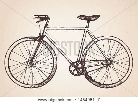 Hand drawn ilustration of  retro bicycle. Vector.