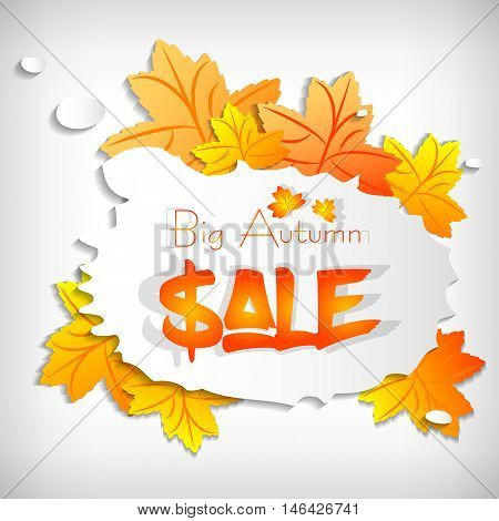 Autumn sale sticker with stylized paper maple leaves and bubble on white background. Vector illustration