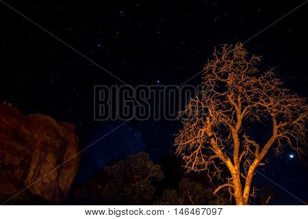 Moab Utah Arches National Parc Stars in the night