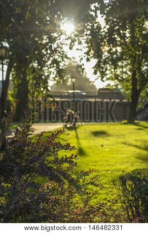 landscape park on the bank of the river Daugava in Riga, and the sun's rays through the trees