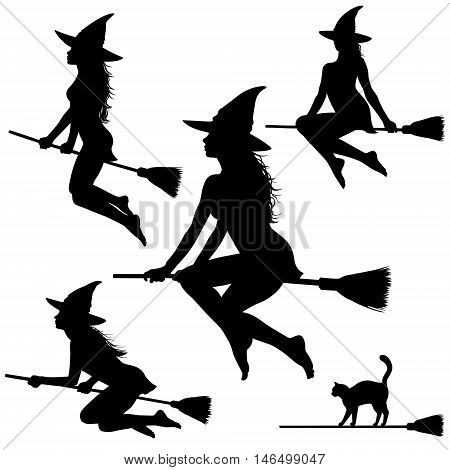 Silhouettes of young beautiful witch flying on broomstick. Helloween illustration.
