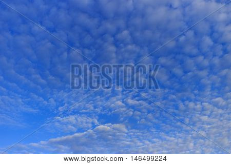The blue sky with the white cloud