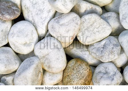 Several small white pebbles are adjacent on the earth.