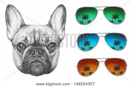 Original drawing of French Bulldog with mirror sunglasses. Isolated on white background.