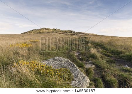 An image showing Rippon Tor situated on Dartmoor National Park Devon England UK