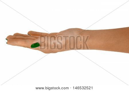 Palm up holding anything natural female's skin green manicure. Isolated on white background.