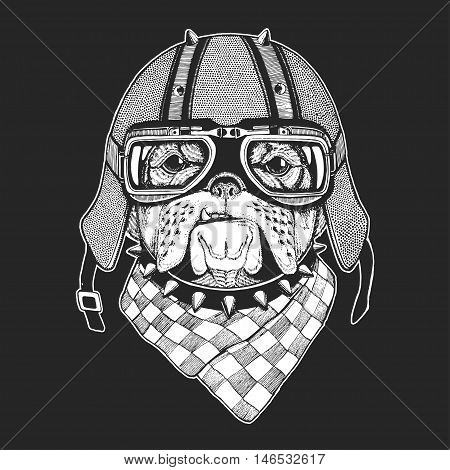 Vintage images of dogs for t-shirt design for motorcycle, bike, motorbike, scooter Hand drawn vector image