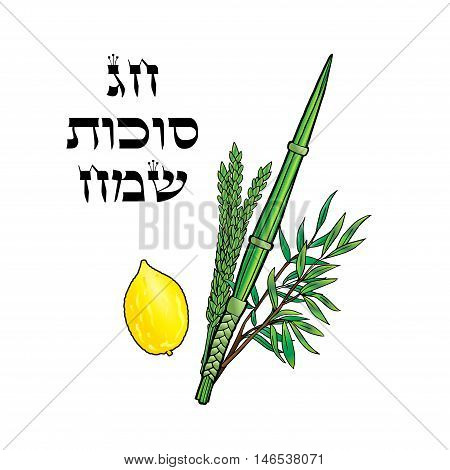 Happy Sukkot background. Hebrew translate: Happy Sukkot Holiday. Jewish traditional four species for Lulav, Etrog Jewish Holiday Sukkot. Vector illustration. Torah, New Year greeting card.