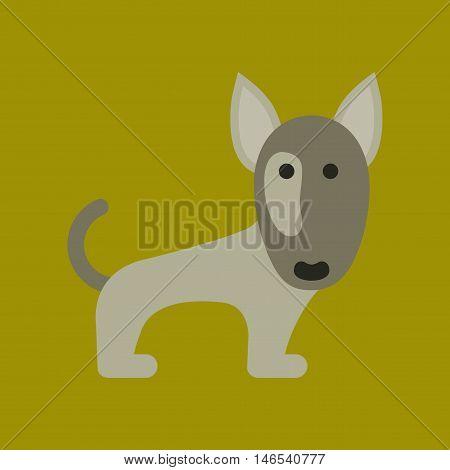 flat icon on stylish background pet dog pitbull