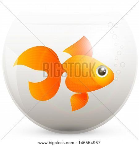 lonely goldfish in a fishbowl vector animal
